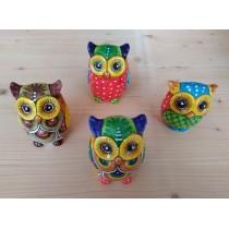 Medium owls
