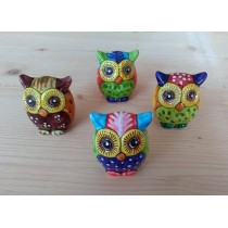 Small owls